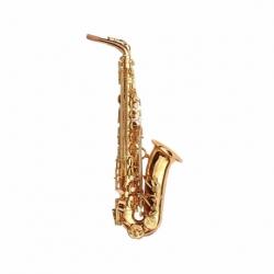 Saxofon PIONEER SAX ALTO MIB PIONEER LAQ.LLAVE FA C/ESTUCHE MOD. SF-506A/L  4100311 - Envío Gratuito