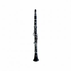 Clarinet PIONEER CLARINETE SIB PIONEER C/ESTUCHE MOD. BCT-13  4203037 - Envío Gratuito