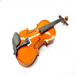 Violin ANDOLINI Violín 4/4 c/estuche y arco p/estudiante  A-VIO-4-4 - Envío Gratuito