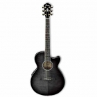 Guitarra Electroacustica IBANEZ GUITARRA ELECTROACUSTICA GRIS TRANSP. MOD. AEG24II-TGB  8213237 - Envío Gratuito