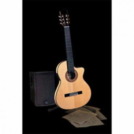 Guitarra Electroacustica ADMIRA GUITARRA ADMIRA E/ACUSTICA EVA-EC  ISADMEVAEC - Envío Gratuito