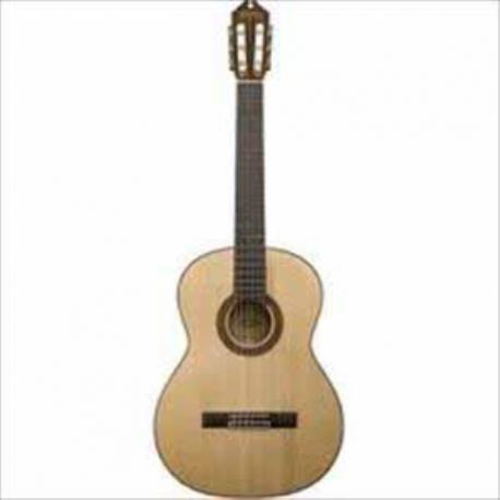 Guitarra Acústica WASHBURN GUITARRA WASHBURN CLASICA WC750SW ISWASWC750SW - Envío Gratuito